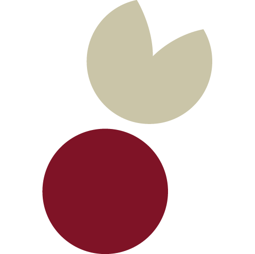 Naturmedizin-Fuerstenfeldbruck-Schmid-Favicon